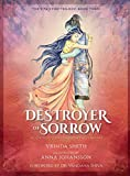 Destroyer of Sorrow: An Illustrated Series Based on the Ramayana