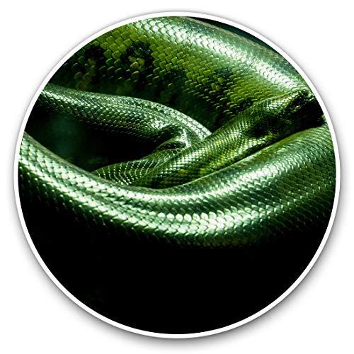 Pegatinas de vinilo (juego de 2) 20cm - Verde Anaconda Snake #21647