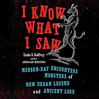 I Know What I Saw audiobook cover art