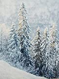 Dekoleidenschaft Wandbild Schneegestöber 60 x 110 cm,