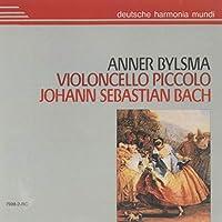 Violoncello Piccolo / Ann