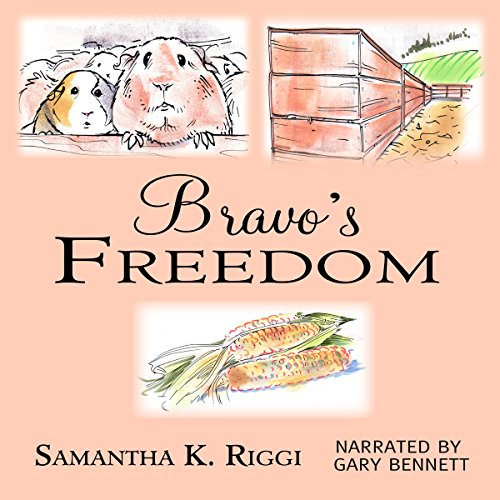 Bravo's Freedom audiobook cover art