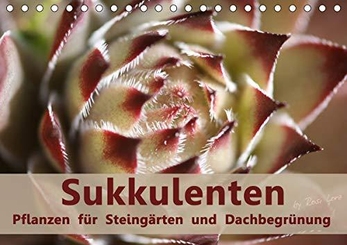 Sukkulenten - Pflanzen für Steingärten und Dachbegrünung (Tischkalender 2021 DIN A5 quer)