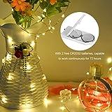 LEDGLE 10er Stück LED Lichterkette Batterie Kupfer Drahtlichterkette Warmweiß 1.2M&24LEDs Lichterketten Weihnachten Batteriebetrieben wasserdichte Lichter Flasche Dekoration - 4