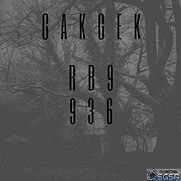 RB9936