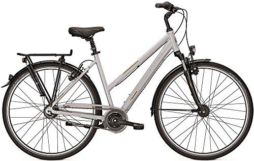 Kalkhoff Agattu 8R City Bike 2016 (palermosilver Damen, 55)