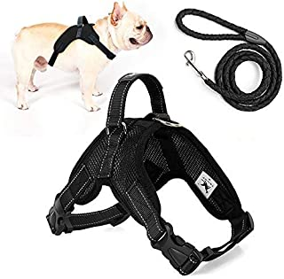 Trongle Dog Harness, Harnais pour Chien Dog No Pull Harness with Handle, Dog Harness Small Breed Easy Control Comfortable ...