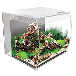 Best Fish Tanks For You In 2019 - Top 10 reviewed 3