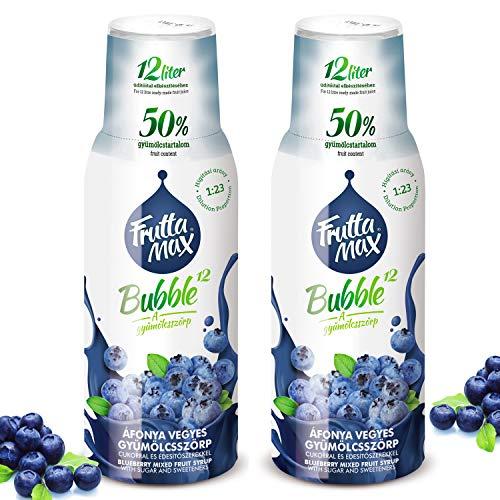 Frutta Max Getränkesirup Frucht-sirup Konzentrat | Heidelbeere Geschmack | weniger Zucker | mit 50% Fruchtanteil | für Soda Maschine geeignet 2erPack(2x500ml)