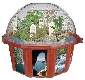 plastic dome terrarium