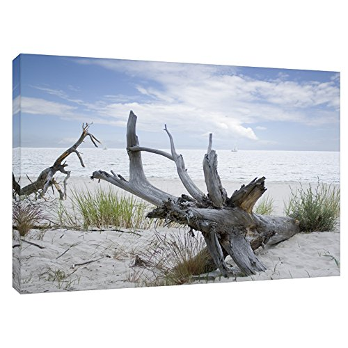 Modern Picture Leinwandbild Leinwanddruck Ostsee Meer Strand Wurzel 40 x 30 cm