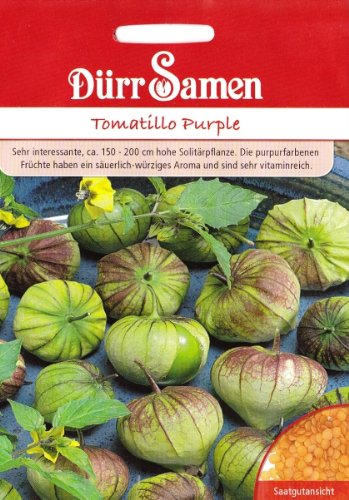 Tomatillo, Purple, Physalis ixocarpa, ca. 25 Samen