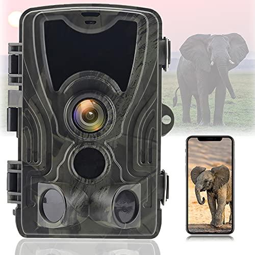 Telecamera per Fauna Selvatica WLAN 30MP 4K con Rilevatore di Movimento per Visione Notturna IR A Basso Bagliore Trasmissione del Telefono Cellulare 0.2s Trigger 120 ° Grandangolare IP66 Impermeabile