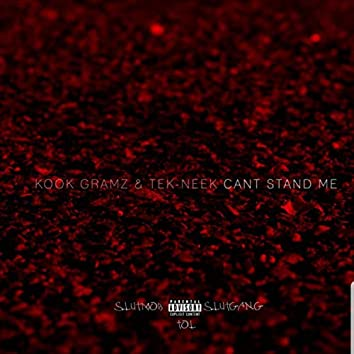 Can't Stand Me (feat. Tek Neek)