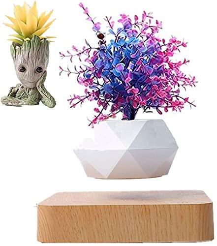 GCM XFHP Levitating Air Bonsai Pot, Levitating Plant, Magnetic Levitation Suspension Floating Pot, Office Potted Plant Home Desk Decor in Flower Pots & Planters from Home & Garden On (Light Color)