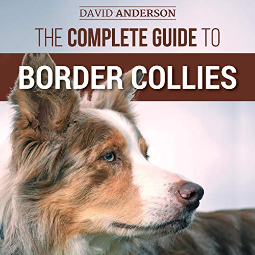 The Complete Guide to Border Collies  By  cover art