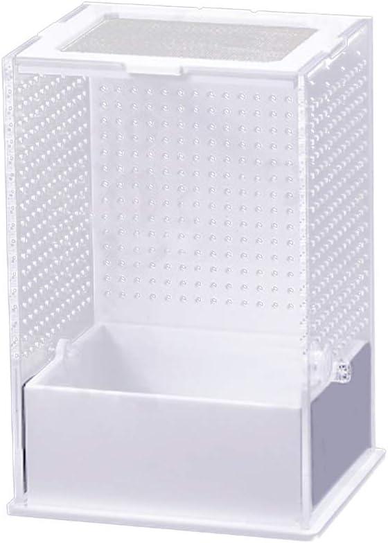 GFEU - Caja de Cultivo para Reptiles de acrílico, Transparente, Transpirable, para terrazas de arañas: Amazon.es: Productos para mascotas