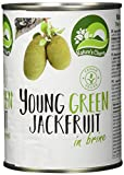 Nature's Charm Jackfruit in Lake, 6er Pack (6 x 565 g)
