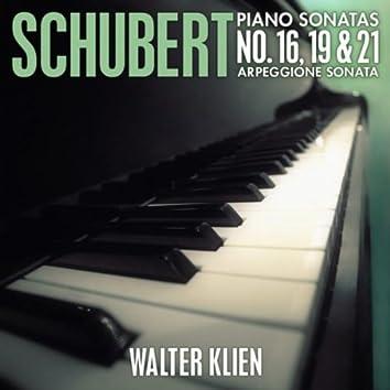 Schubert: Piano Sonatas No. 16, 19 & 21 - Arpeggione Sonata