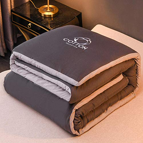 Soft Microfibre Feels Like Down Duvet Quilt,Warm quilt in autumn and winter, washable quilt core for 1 student and 2 people-Dark gray_200*230cm/79 * 91'/8.8LB