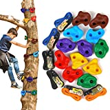 HAPPY MOTTE 12 Tree Rock Climbing Holds for Kids, with 6pcs 10ft Ratchet Straps for Warrior Obstacle Course Outdoor Playground Backyard Accessories for Tree Climbing