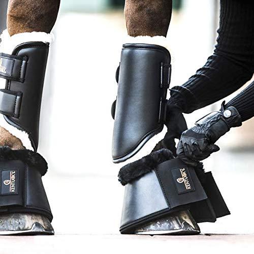 Kentucky Horsewear Allround Gamaschen Leder Vorne - Size FULL