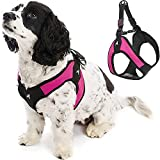 Gooby Escape Free Easy Fit Harness - Hot Pink, Small - No Pull Step-in Patented Small Dog Harness with Quick Release Buckle - Perfect On The Go No Pull Harness for Small Dogs or Medium Dog Harness