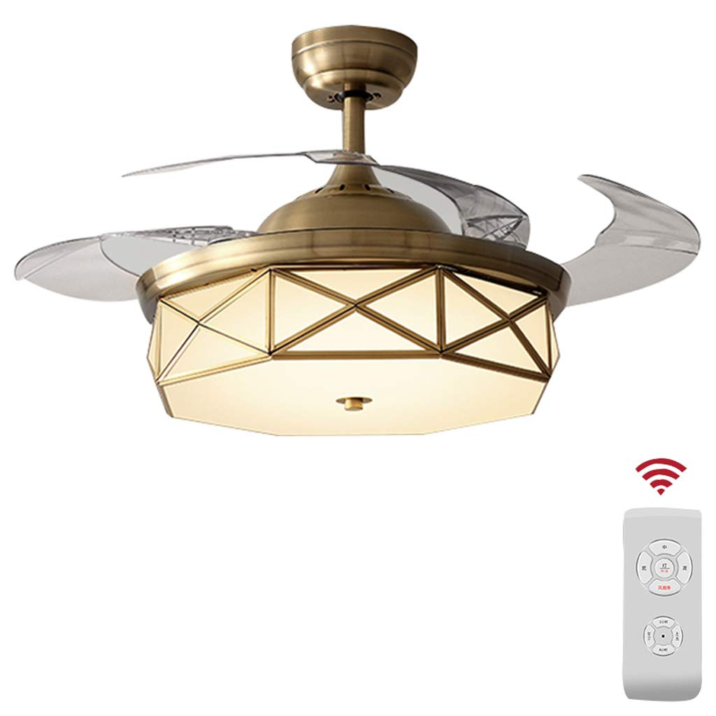 Ceiling Fan Light JY- Luz para Ventilador de Techo, Motor ...