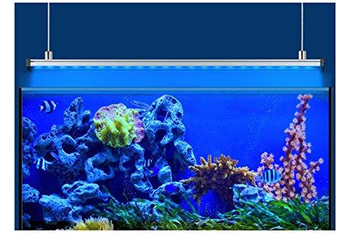 Eheim rampa Power LED + Marino actinique iluminación para acuariofilia