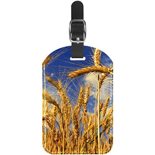 Gepäckanhänger Pflanzen-Schilfrohr Phragmites Herbst Leder Reise Koffer-Etiketten 1 Packung