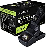 Best Rat Traps - Rat Traps that Work (6 Pack) - Easy Review