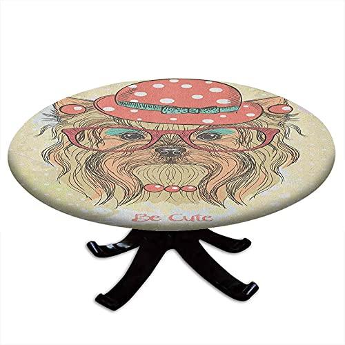 Tovaglia rotonda con bordi elastici, Be Cute Ritratto of an Adorable Dog con orecchini, collana, occhiali, cappello, stile Yorkie, diametro 142,2 cm, marrone chiaro corallo