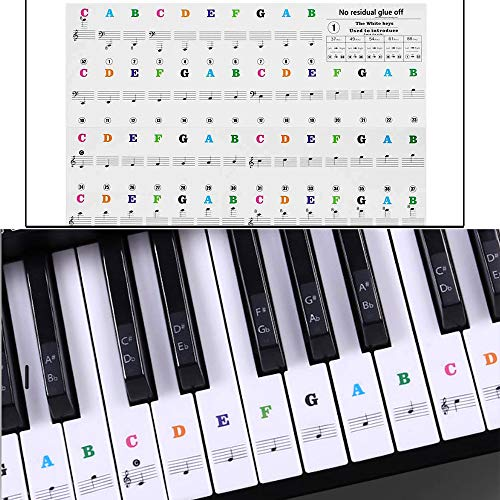 Klavier Aufkleber Abnehmbare Transparent Noten-Aufkleber Klaviertasten Aufkleber für Klavier und Keyboard mit 37/49/54/61/88 Key Piano (Farbe)