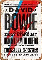 Shimaier 30×40cm 金属ブリキ看板ホーム装飾壁アート 1973 David Bowie in London