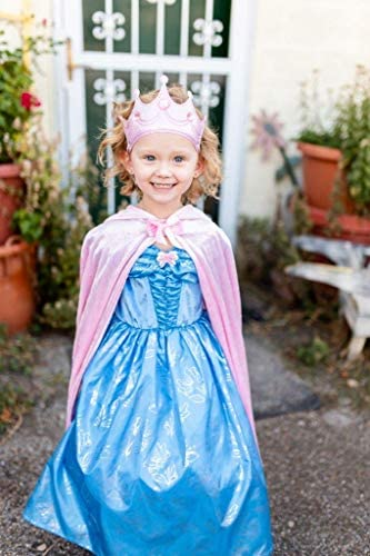 Cinderella butterfly dress _image4