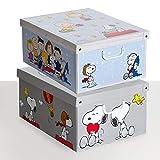 Kanguru 660 1AZ SET DE DOS Cajas de almacenamiento en cartón, tamaño grande, 2 unidades, modelo 1, Multicolor, 50x39xh24 cm