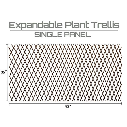 Expandable Garden Trellis Plant Support Willow Lattice Fence Panel for Climbing Plants Vine Ivy Rose Cucumbers Clematis 36X92 Inch… …