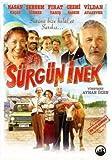 Surgun Inek Dvd