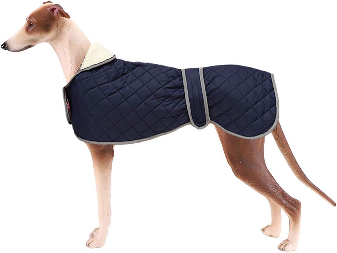 Geyecete - Abrigo cálido térmico Acolchado para Perro Galgo, con Bandas Ajustables, para Invierno Clima frío,Ropa con Agujero del arnés, para medianos y Grandes Perros-Azul-M