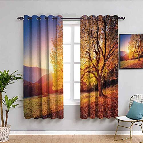 Decoración de paisajes linda cortina árbol en pendiente de la colina con vigas de sol en Mountain Valley dramática vista de la mañana uso repetible naranja azul W108 x L84 pulgadas