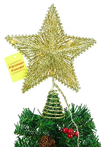 Christmas Concepts 10