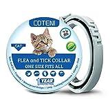 COTENI Collare antipulci per Gatti – 12 Mesi di Protezione Contro Le zecche – Regolabile, Sicuro e Impermeabile – Collare antipulci Naturale e Anallergico