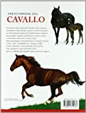Zoom IMG-1 enciclopedia del cavallo ediz illustrata