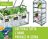 Zoom IMG-1 kit 6 variet semi piante