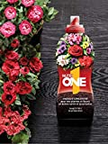 Nutrione Abono líquido Concentrado Plantas y Flores. Fertilizante Premium, Ingredientes Naturales, 1 litro, Negro