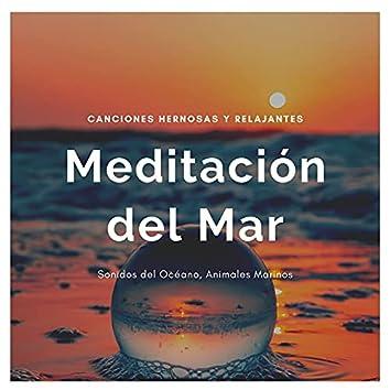 Meditación del Mar: Canciones Hernosas y Relajantes, Sonidos del Océano, Animales Marinos