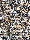 12 Pounds River Rock Stones, Natural Decorative Polished Mixed Pebbles Gravel,Outdoor Decorative...