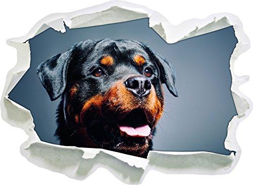 Stil.Zeit Treuer Rottweiler, Papier 3D-Wandsticker Format: 62x45 cm Wanddekoration 3D-Wandaufkleber Wandtattoo