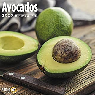 2020 Avocados Calendar 16 Month 12 x 12 Wall Calendar by Bright Day Calendars