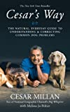Cesar's Way - The Natural, Everyday Guide to Understanding and Correcting Common Dog Problems - Hodder & Stoughton - 01/08/2006